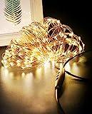 Luces Navidad USB 24M 240 LED, Litogo Regulable Guirnaldas Luces LED Decoracion Impermeable Cadena de Luces LED Decorativas para Habitacion Arbol Navidad Interior y Exterior, Boda, Fiesta, Balcón
