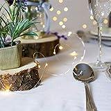Guirnalda Luces Pilas, Luces Led Pilas, Luces De Navidad, Luces de Hadas para Decorativas, Navidad, Habitacion, Fiesta, Bodas, Alambre de Plata. Luces de Cadena Micro con Pilas (40 LED de luz blanca)
